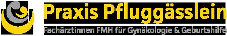 Praxis Pfluggaesslein
